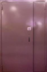 Полуторная  двухлистовая  дверь  1200 на 2100 мм.